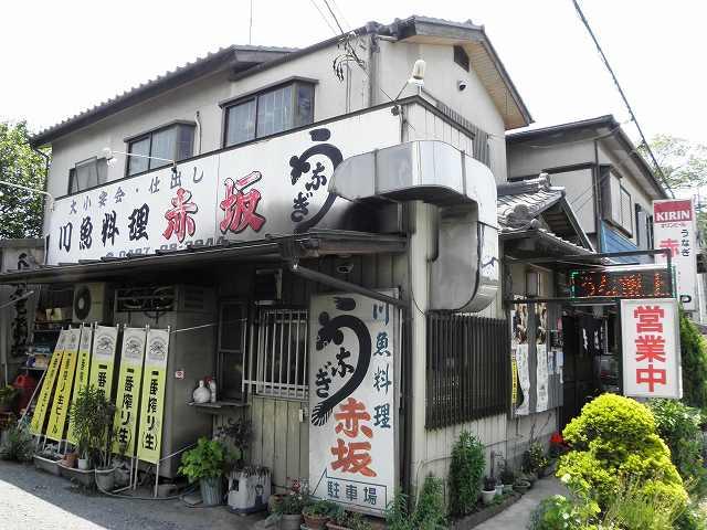 """私の好きな鰻屋さん""""赤坂"""": 松ち..."""